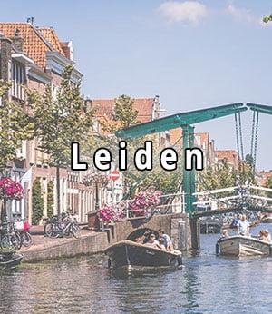 Bekijk strippers in Leiden