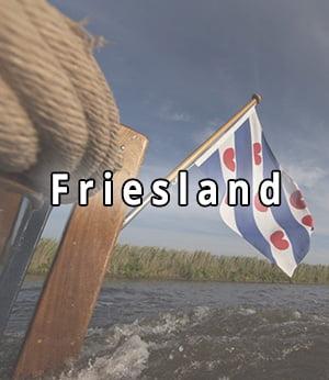 Bekijk strippers in Friesland
